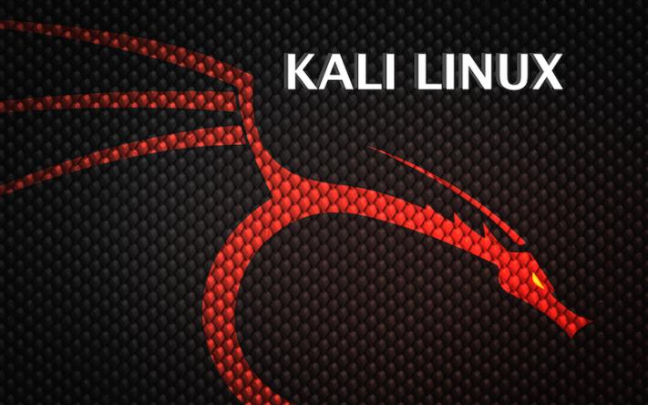 Kali ile Linux'e Giriş Dökümanı