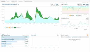 newrelic application overview
