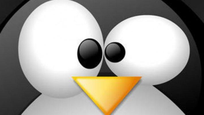 Linux Yaz Kampı 2014 – Web Uygulama Güvenliği ve Güvenli Kod Geliştirme Kursu